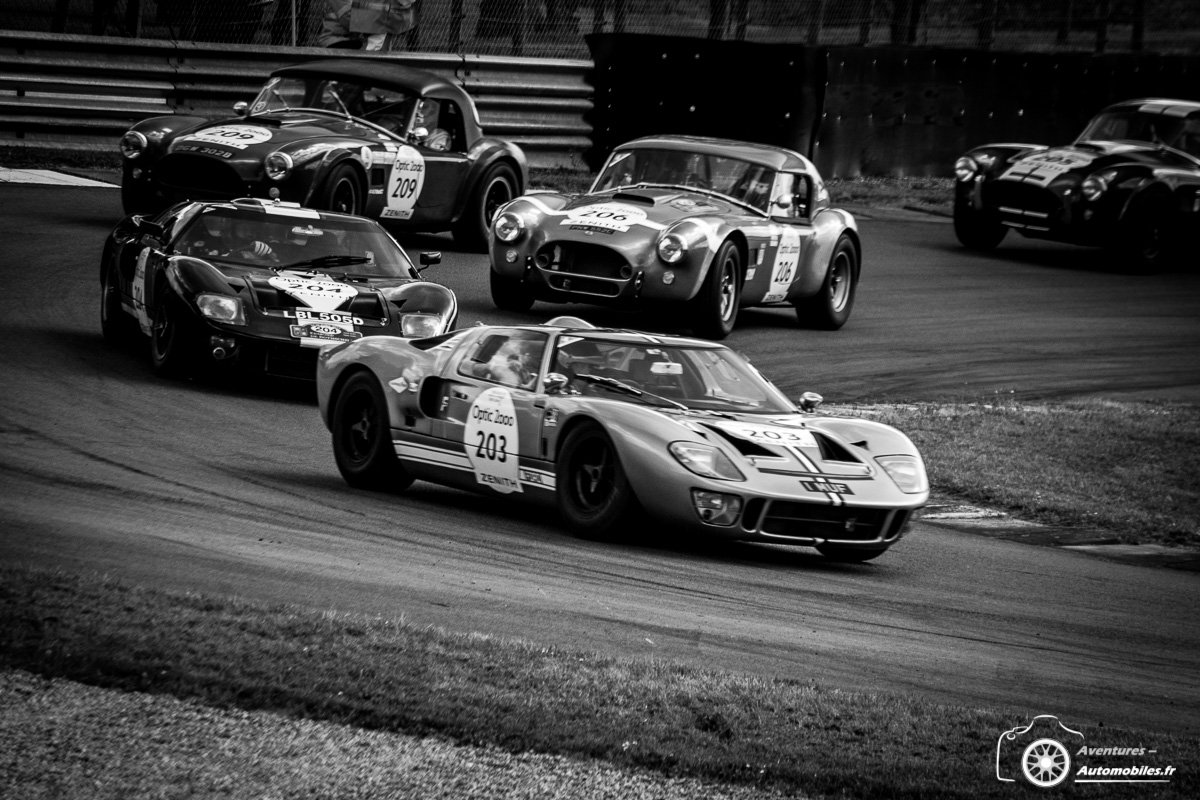 Ford GT40 / Shelby Cobra